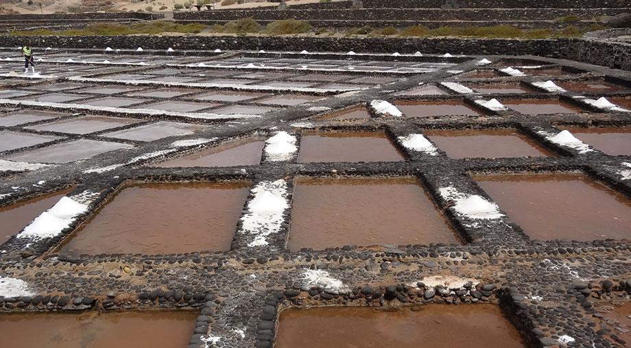 sea salt museum fuerteventura
