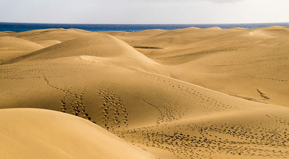 maspalomas dunes canary islands