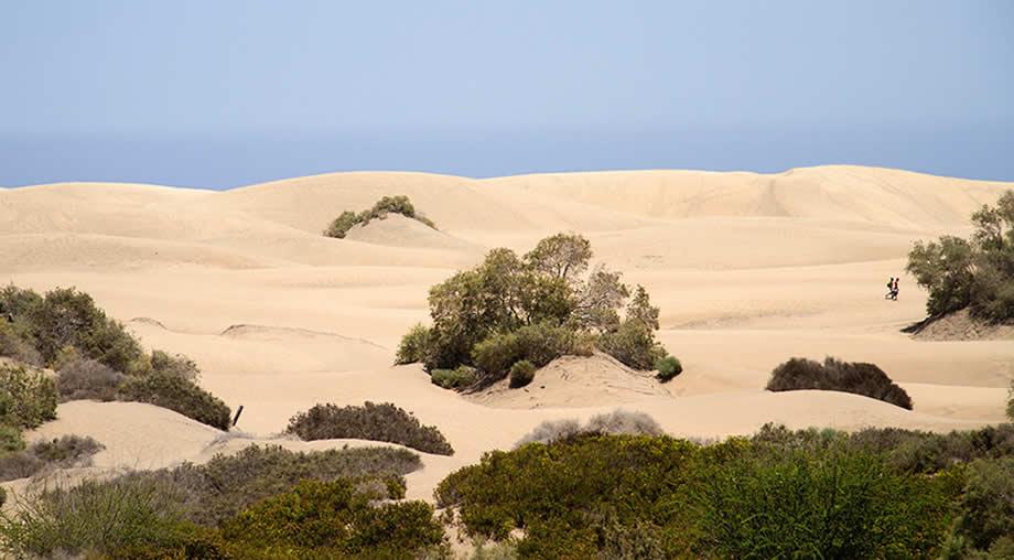 maspalomas playa del ingles weather may
