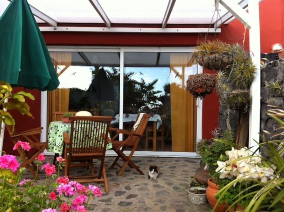 airbnb-los-llanos-de-ariadne-la-palma