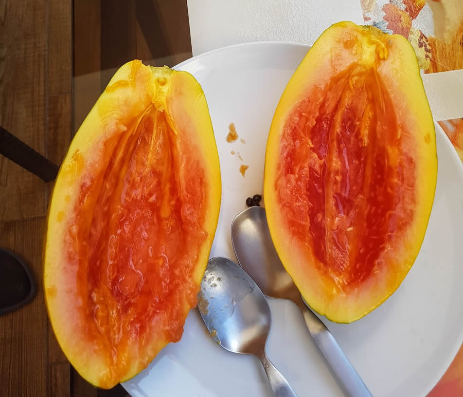 papaya tenerife
