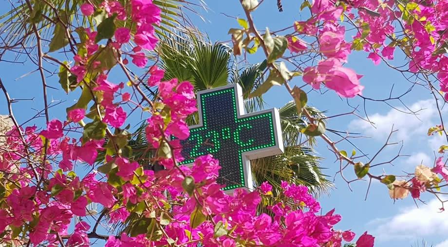 temperature-tenerife-january.jpg (129 KB)