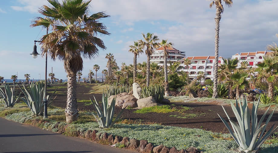 tenerife may holidays canary islands