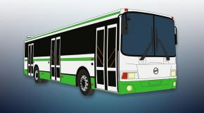 Fuerteventura buses