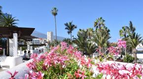 When to visit tenerife