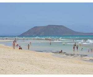Fuerteventura menu